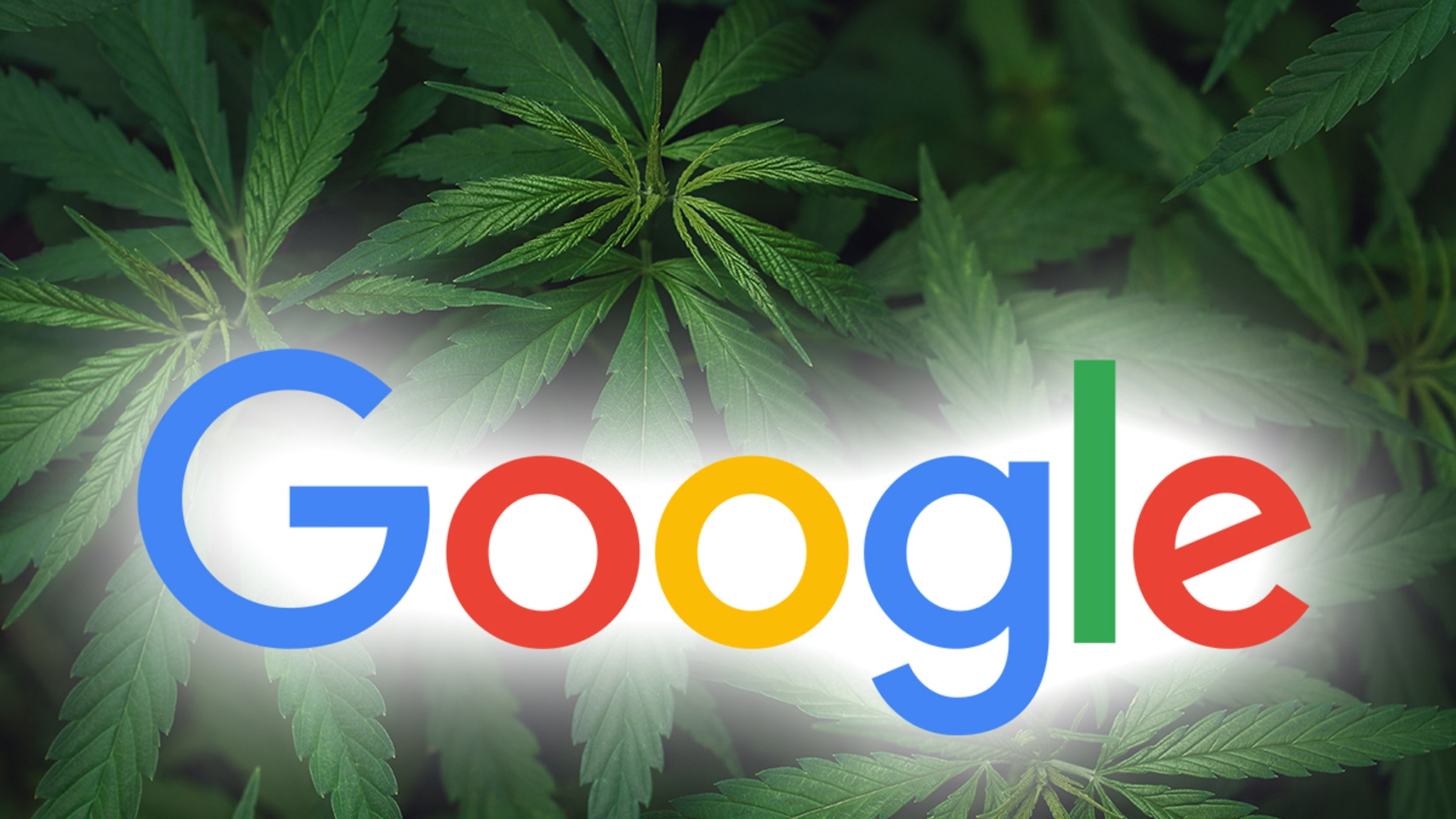New Jerseyites Google 'How to Roll a Joint' After Vote Legalizes Weed