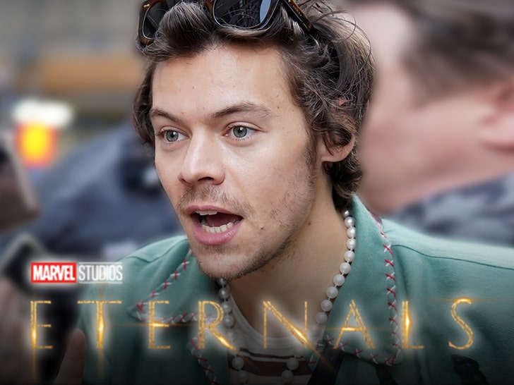 Harry Styles Reportedly Cast as Thanos' Brother in Marvel's 'Eternals'.jpg