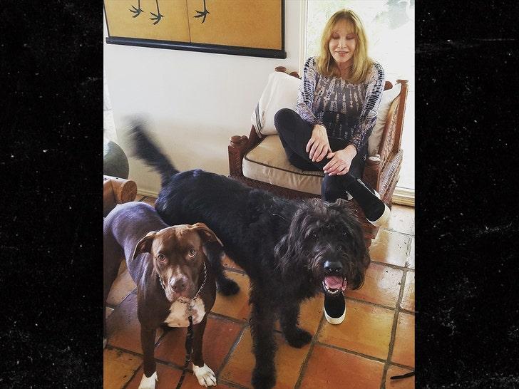 Таня Робертс будет кремирована, пепел разлетится там, где она гуляла со своими собаками