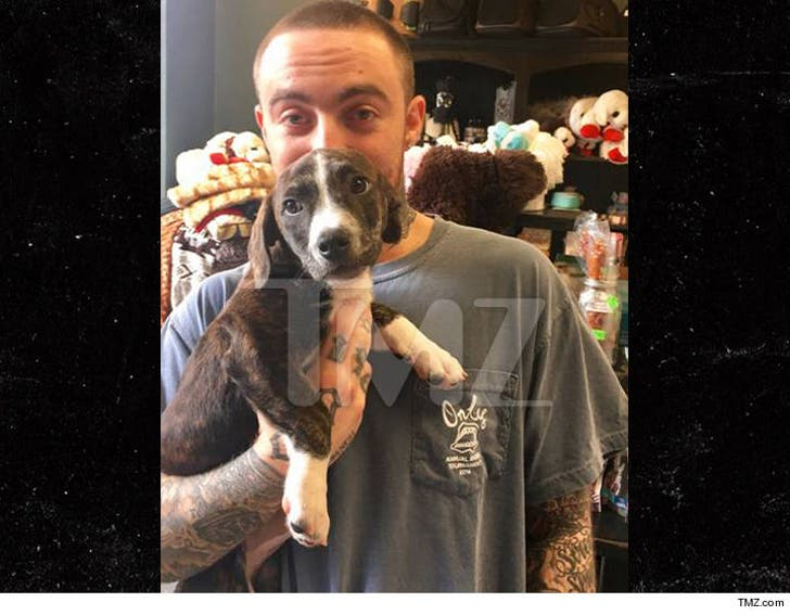 Ariana Grande Has Competition from Mac Miller's New Puppy