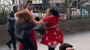 Minnie Mouse vs. Security Fight Video, Cops Want to Talk to the Women