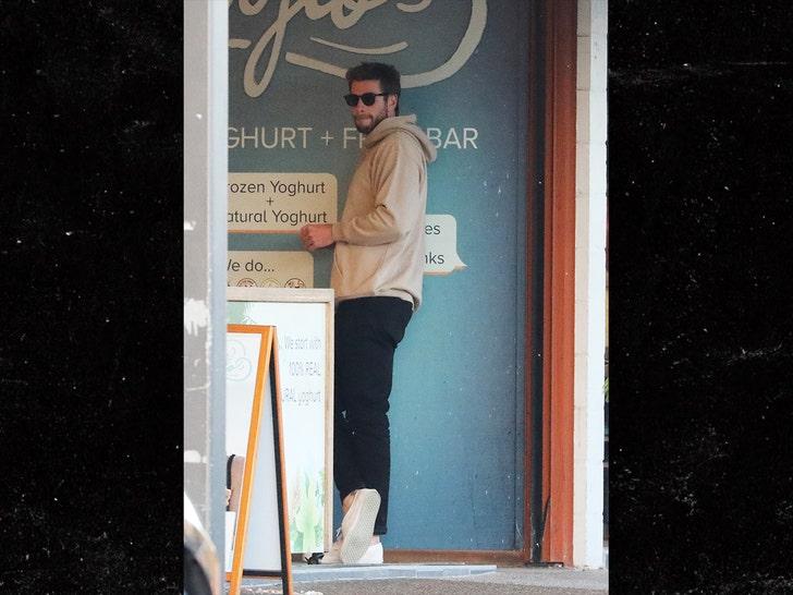 Liam Hemsworth Hangs with His Bro Chris After Miley Cyrus Split