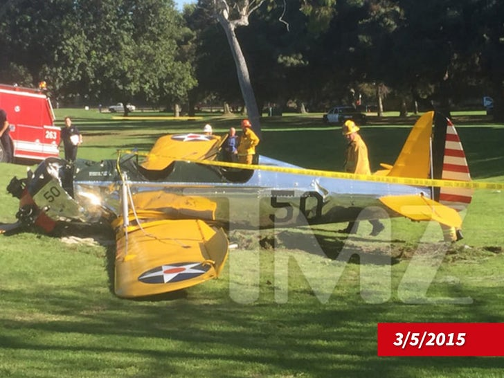 Harrison Ford -- The Plane Crash Photos