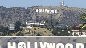 Hollywood Sign Vandalized with Cow, Suspects Arrested