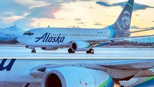 Alaska Airlines Plane Kills Bear While Landing