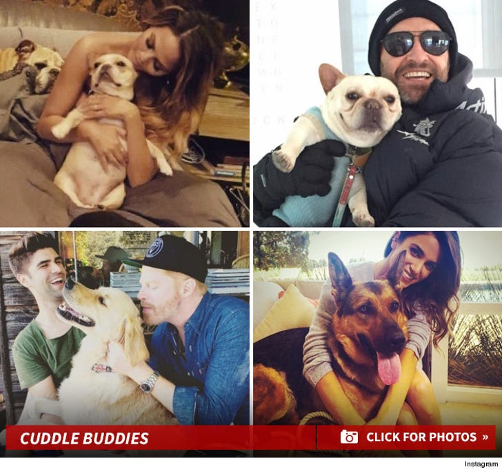 Stars Snuggling Their Dogs
