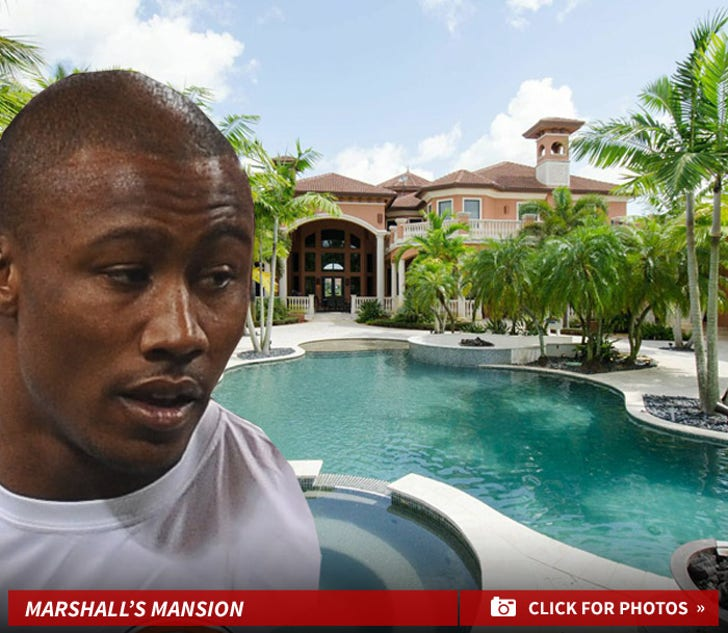 Brandon Marshall's Mansion