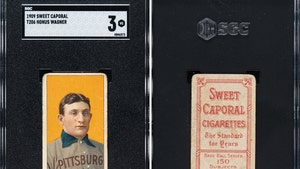 Honus Wagner T206 Card Sells For $6.6 Million, Most Expensive Sports Card of All Time!