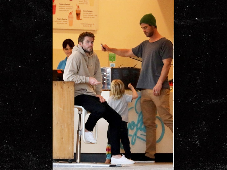 Liam Hemsworth Hangs with His Bro Chris After Miley Cyrus Split