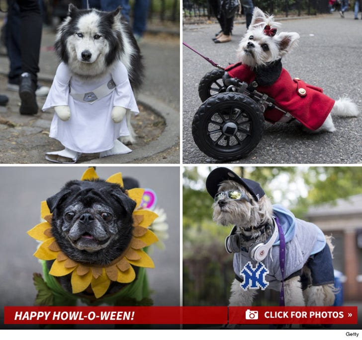 New York's Halloween Dog Parade ... Happy Howl-O-Ween!