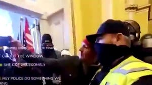 Two Capitol Police Officers Suspended for Yukking It Up with Rioters