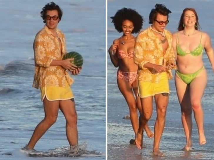 Harry Styles -- Melons and Models