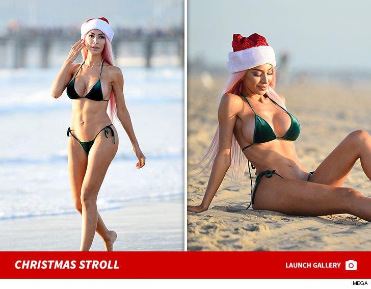 Farrah Abraham Takes Stroll Down Santa Monica Beach