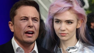 Elon Musk and Grimes Have Twitter Beef Over Gender-Neutral Pronouns