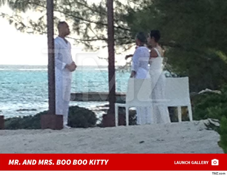 Mr. and Mrs. Boo Boo Kitty Wedding