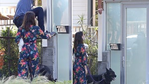 Ben Affleck Climbs Gate To Own Home After Getting Locked Out With Ana
