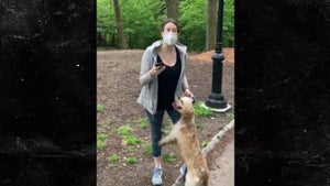 Central Park 'Karen' Amy Cooper Gets Her Dog Back