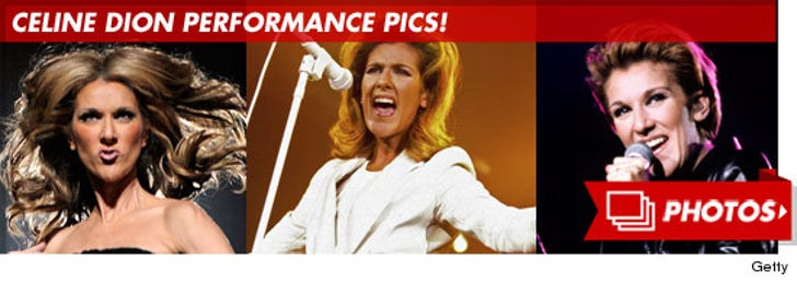 Celine Dion Performance Photos