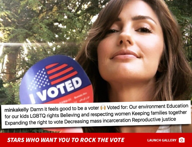 Stars Who Want You To VOTE!