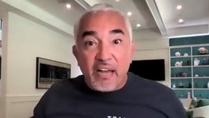 Cesar Millan Reaches Out to White House with Plan to Help Biden's Dogs