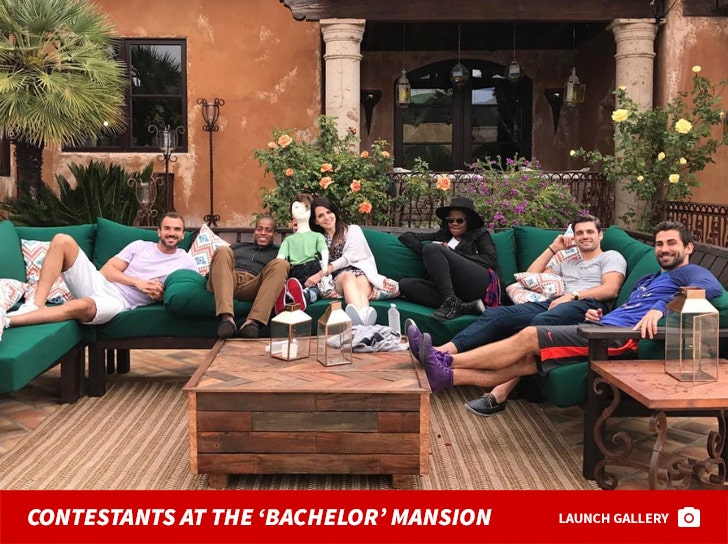 Contestants In The 'Bachelor' Mansion