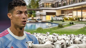 Cristiano Ronaldo Reportedly Moves Mansions Due To Baaing Sheep Waking Him Up
