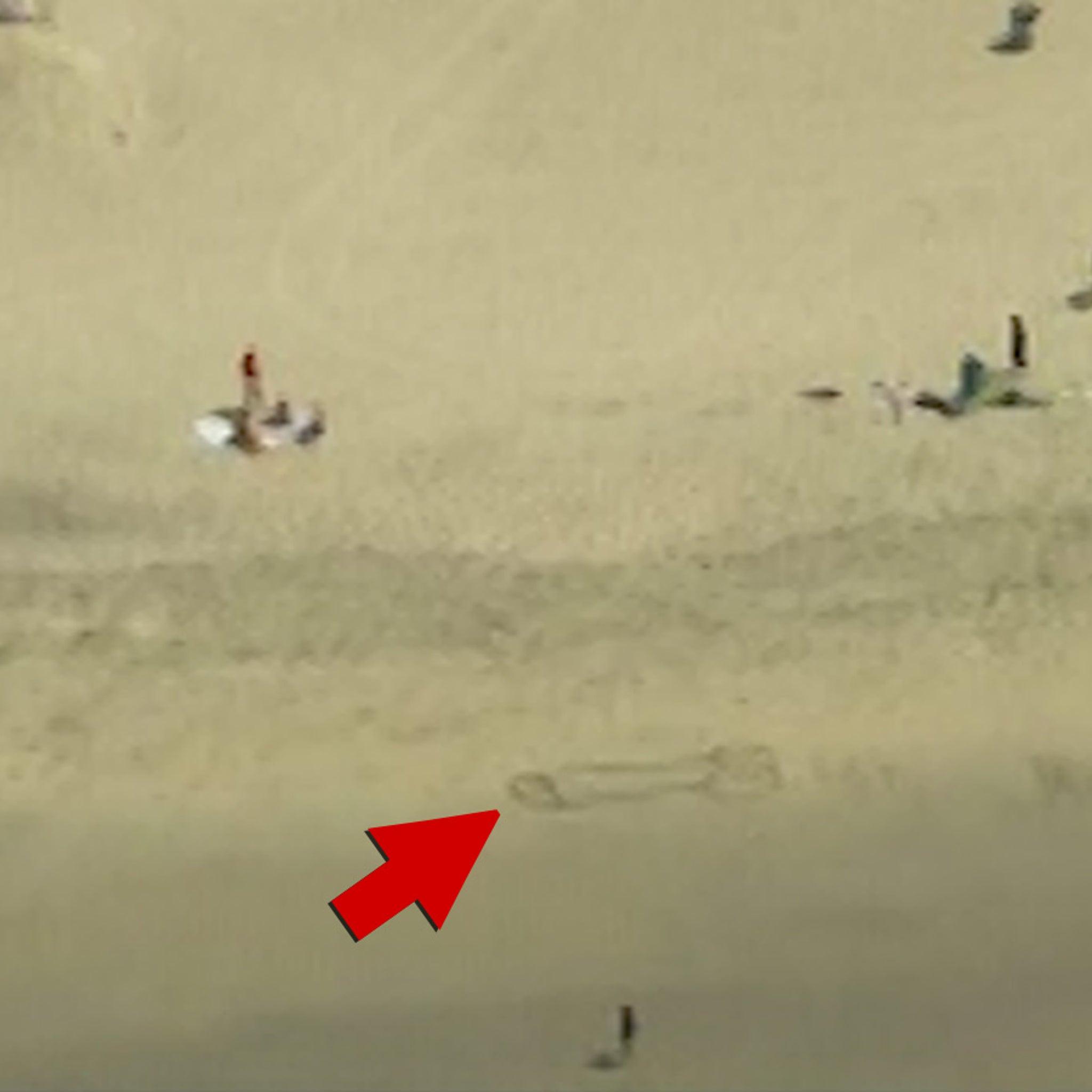Beach hard cock
