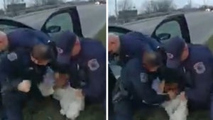 Michigan Cop Punches Black Man in the Face Repeatedly During Arrest