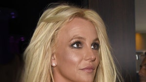 Britney Spears Formally Asks to End Conservatorship This Fall
