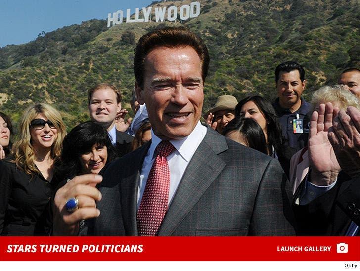Stars Turned Politicians