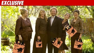 'Sister Wives' Halloween -- Braving the Elements