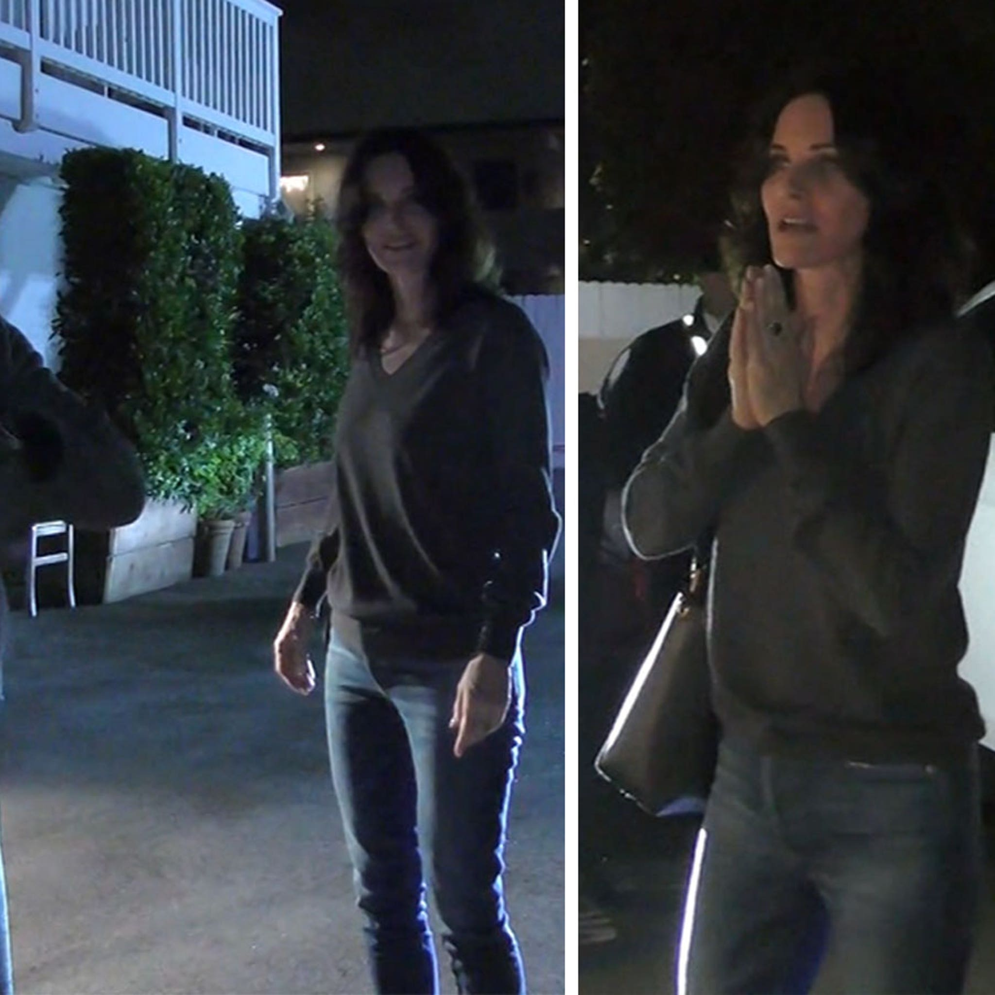 Courteney Cox Thanks Paparazzo Who Saved Her Dogs' Lives