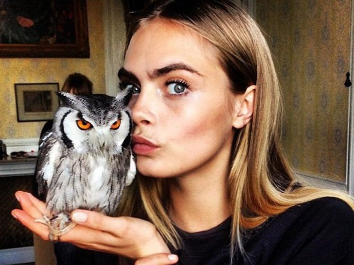 Celebrities With Birds