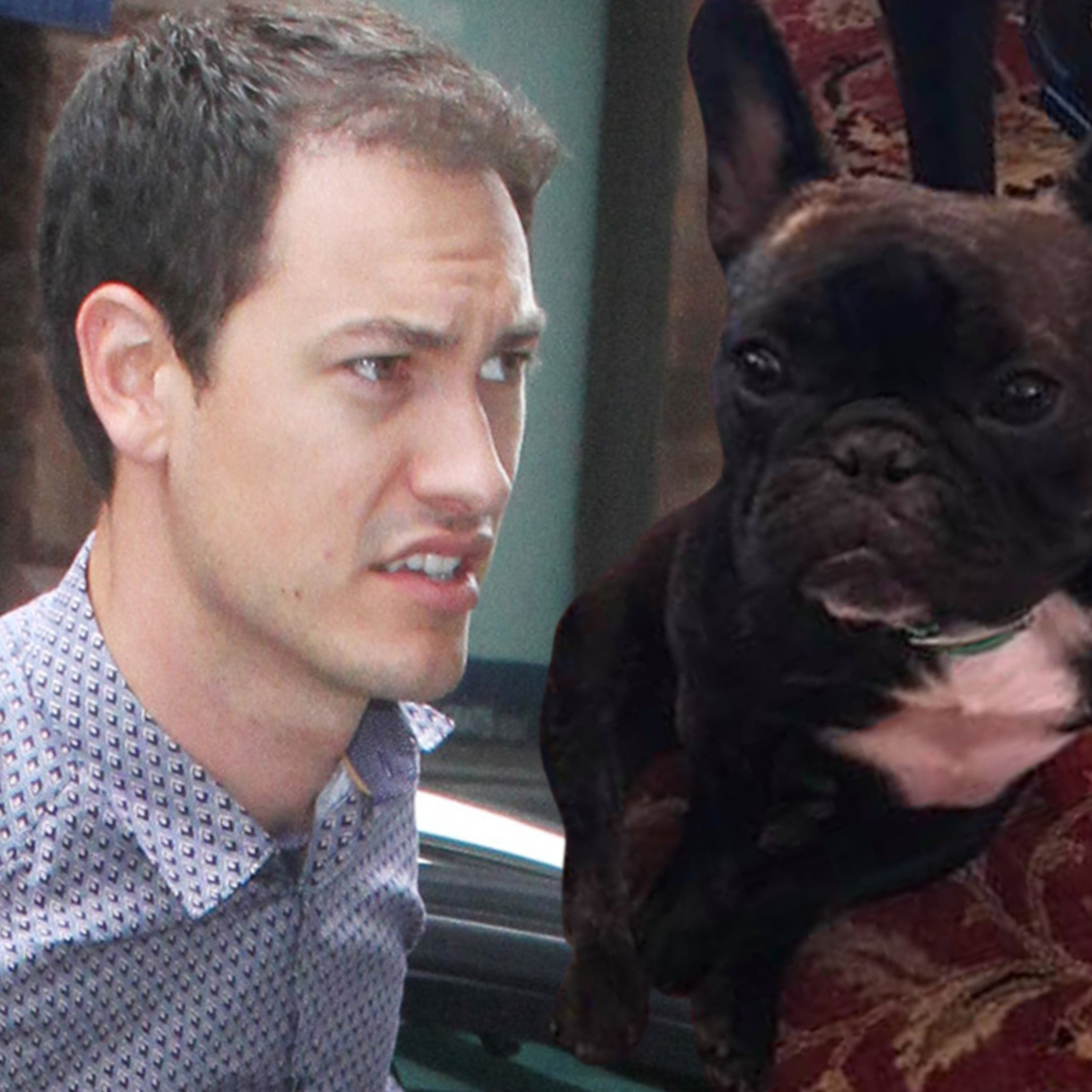 new style 26db2 f4bdf NASCAR's Joey Logano Searching For Lost Family Dog, Fears ...