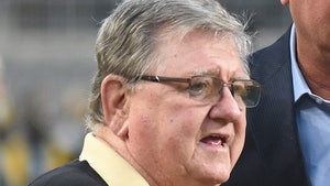 Pittsburgh Steelers Broadcaster Bill Hillgrove Suspended 2 Games for Wild DUI