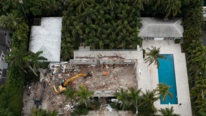 Jeffrey Epstein's Palm Beach Estate Demolished
