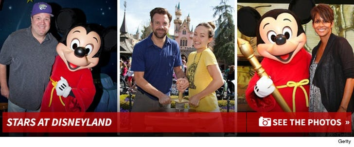 Stars At Disneyland