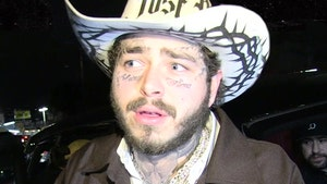 Post Malone Facing Backlash for Denver Show Amid Coronavirus Fears
