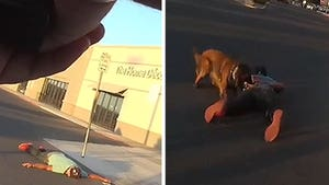 Arizona Cops Release Body Cam Footage Showing Brutal Use of K-9 Force