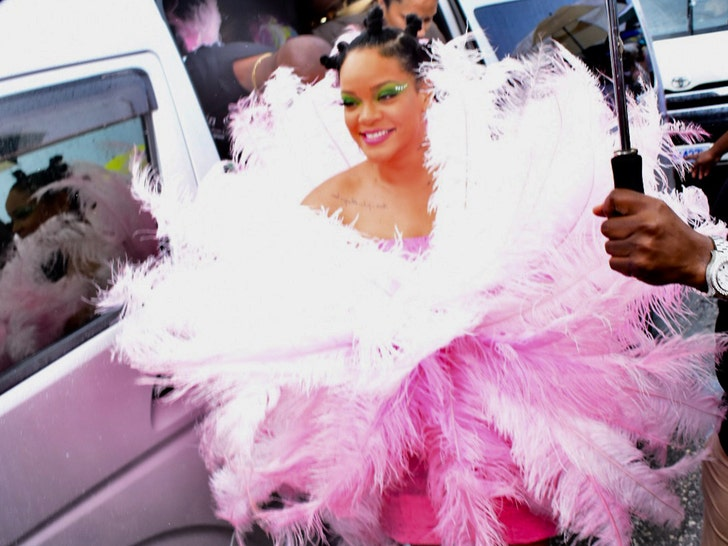 Rihanna Returns To Barbados In Pink Feathered Dress For Crop Over Festival