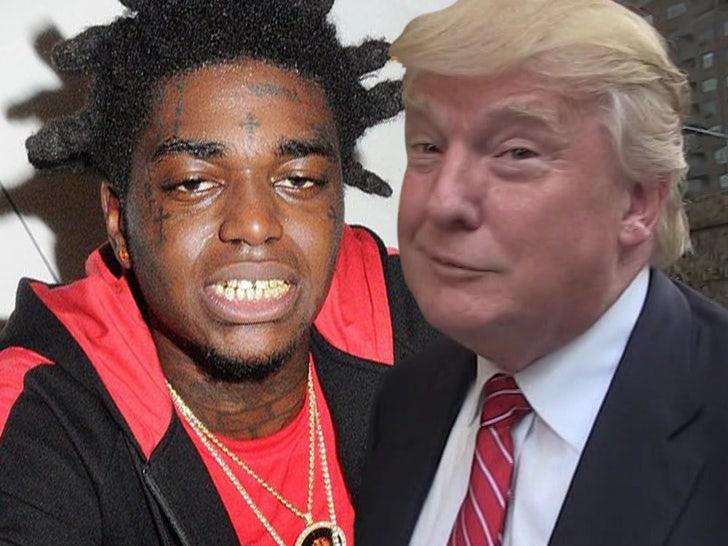 Kodak Black Wants to Meet Trump for 'Brilliant' Idea, Offers His Life