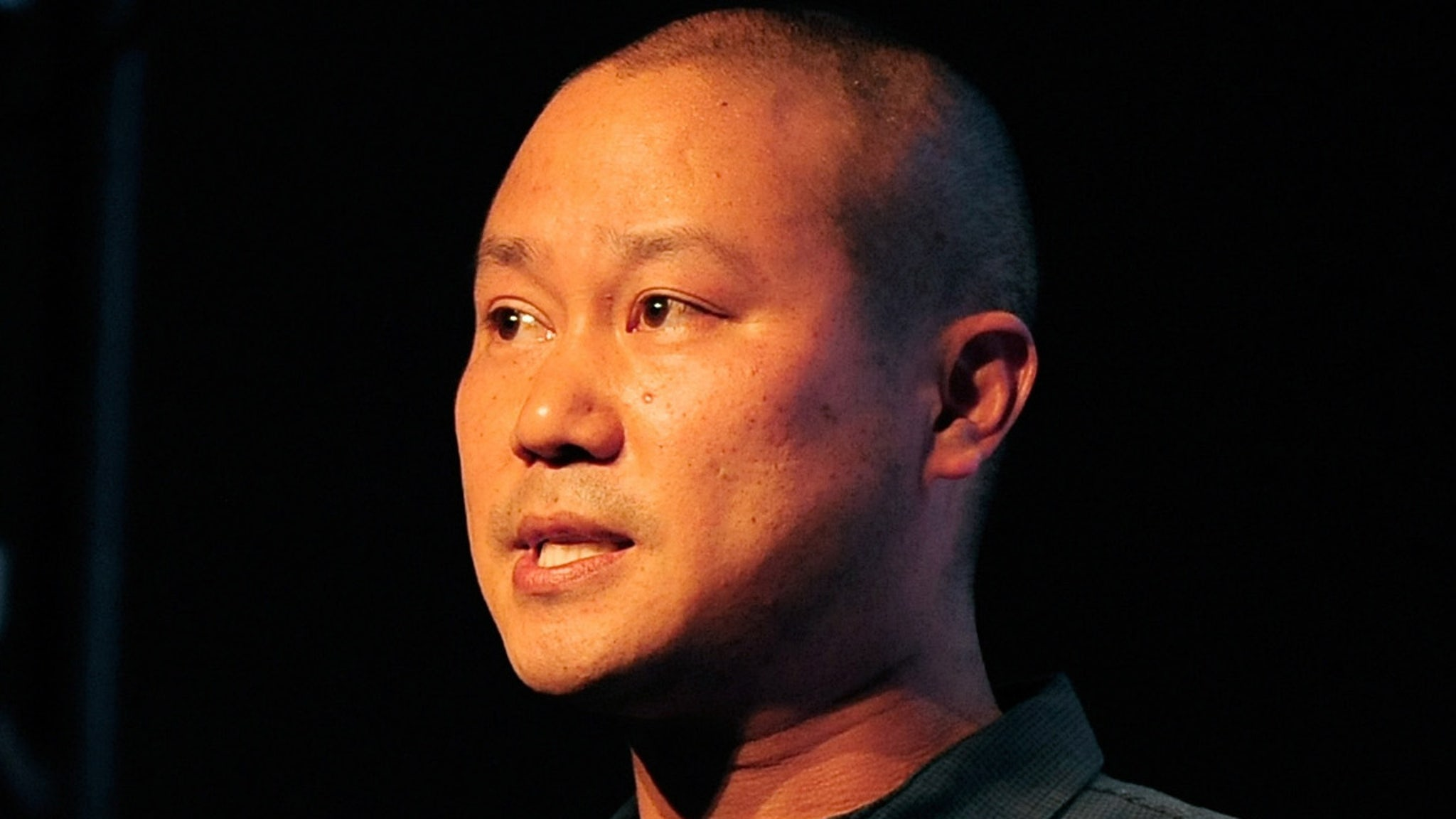 Ex-Zappos CEO Tony Hsieh's Estate Hit with $40k Bill for Brain Artwork thumbnail