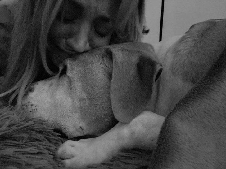 Kaley Cuoco's Dog, Norman, Dies.jpg