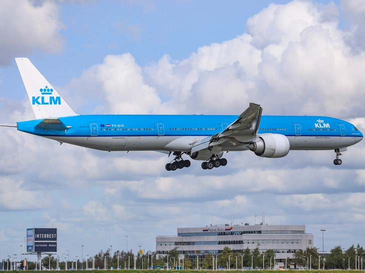 Another Dog Dies on KLM Flight Due to Alleged Heat Stroke