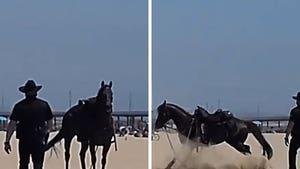 LAPD Horse Ditches Cop Rider, Evades 'Arrest' on Venice Beach