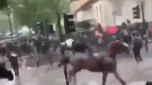 London Cop Knocked Off Horse After Slamming Into Street Light