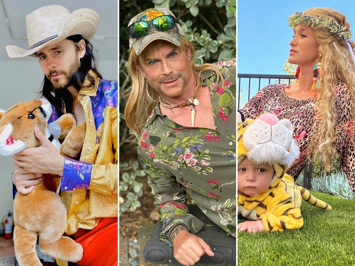 Celebrity 'Tiger King' Costumes
