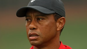 Tiger Woods Search Warrant Based on Possible Evidence of Reckless Driving