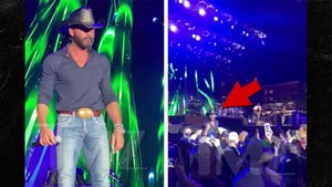 Tim McGraw Jumps Off Stage, Confronts Hecklers at Reno Show