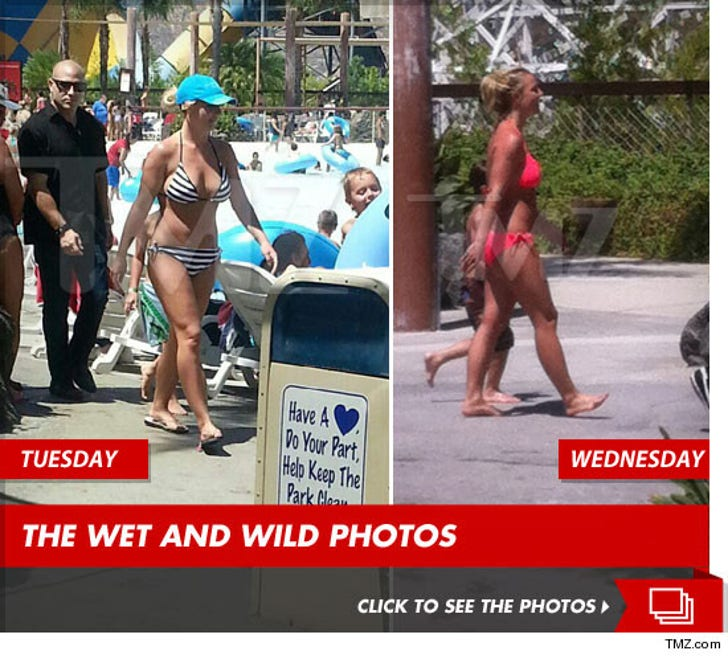 Britney Spears -- 2-Day Bikini Party at SoCal Waterpark